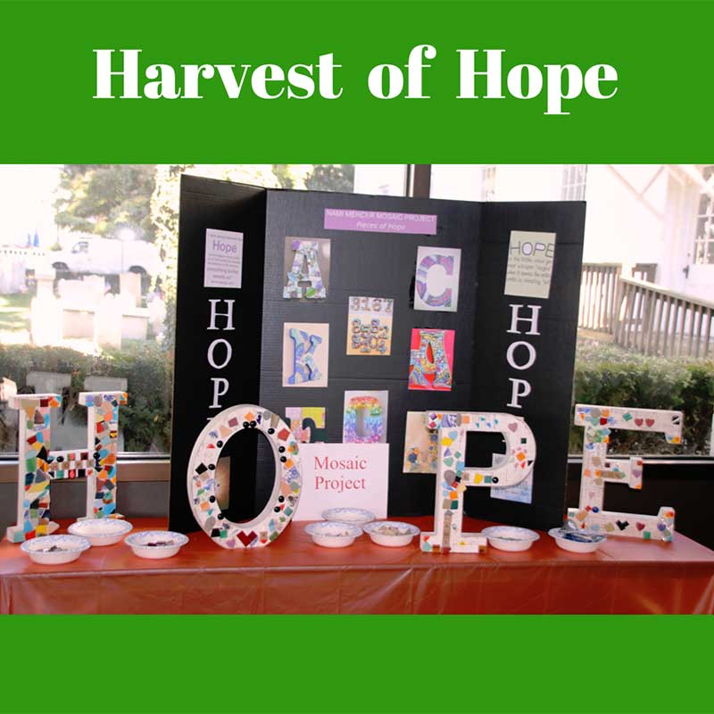 home-harvest-of-hope